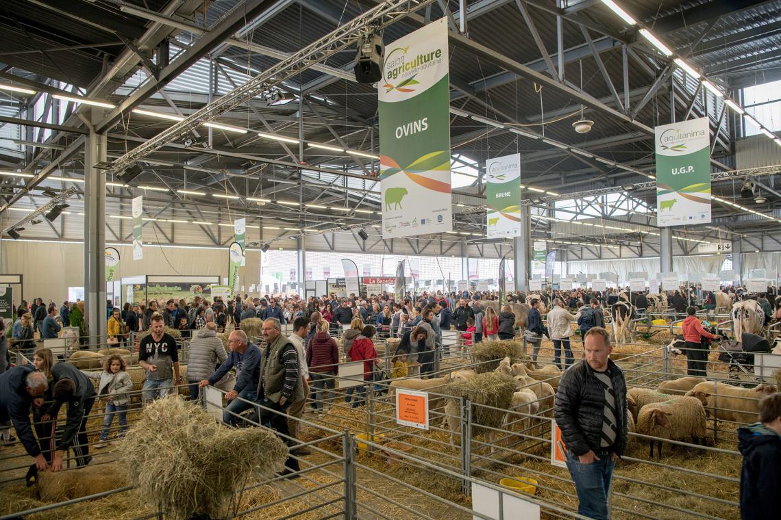 Salon de l'Agriculture - 1