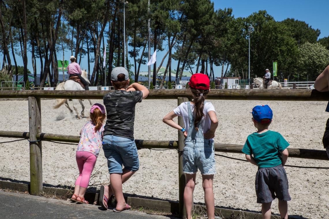 SALON DE L'AGRICULTURE DE LA NOUVELLE AQUITAINE - EQUITAINE 1